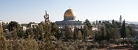 """Trees with mosque in the background, Dome Of the Rock, Temple Mount, Jerusalem, Israel by Panoramic Images - 27"""" x 9"""""""