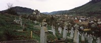Tombstones in a cemetery, Saxon Church, Biertan, Sibiu County, Transylvania, Romania Fine Art Print