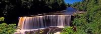 Waterfall in a forest, Tahquamenon Falls, Tahquamenon River, Michigan, USA Fine Art Print