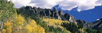 """Forest on a mountain, Jackson Guard Station, Ridgway, Colorado, USA by Panoramic Images - 27"""" x 9"""", FulcrumGallery.com brand"""
