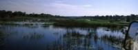 "Edge of the Okavango Delta, Moremi Wildlife Reserve, Botswana by Panoramic Images - 27"" x 9"""