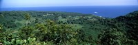 """High angle view of landscape with ocean in the background, Wailua, Hana Highway, Hana, Maui, Hawaii, USA by Panoramic Images - 27"""" x 9"""", FulcrumGallery.com brand"""