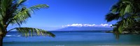 "Palm trees on the beach, Kapalua Beach, Molokai, Maui, Hawaii, USA by Panoramic Images - 27"" x 9"" - $28.99"