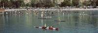 Paddleboarders Dana Point California