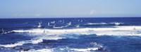 "Tourists windsurfing, Hookipa Beach Park, Maui, Hawaii by Panoramic Images - 27"" x 9"""