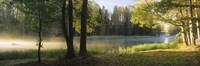 """Dal River, Sweden by Panoramic Images - 27"""" x 9"""""""