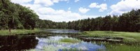 """Reflection of clouds in a pond, Adirondack Mountains, New York State, USA by Panoramic Images - 27"""" x 9"""""""