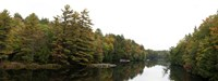 """Reflection of trees in the Musquash River, Muskoka, Ontario, Canada by Panoramic Images - 27"""" x 9"""""""