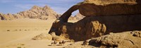 """Camels at the eye of the eagle arch, Wadi Rum, Jordan by Panoramic Images - 27"""" x 9"""""""
