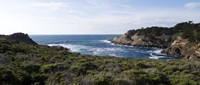 """Coastline, Point Lobos State Reserve, Carmel, California by Panoramic Images - 27"""" x 12"""""""