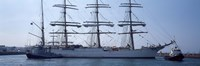 """Harbor maneuvers at a harbor, Rosmeur Harbour, Douarnenez, Finistere, Brittany, France by Panoramic Images - 27"""" x 9"""""""