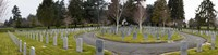"""Tombstones in a Veterans cemetery, Vancouver Island, British Columbia, Canada 2011 by Panoramic Images, 2011 - 27"""" x 9"""""""