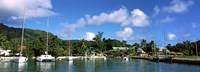 """Yachts and small fishing boats at the harbor on La Digue Island, Seychelles by Panoramic Images - 27"""" x 9"""""""