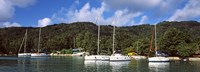"""Yachts anchored at the harbor on La Digue Island, Seychelles by Panoramic Images - 27"""" x 9"""""""