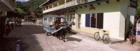 """Ox-drawn cart in a street, La Digue Island, Seychelles by Panoramic Images - 27"""" x 9"""""""
