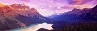 "Peyto Lake, Alberta, Canada by Panoramic Images - 36"" x 12"""