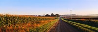 """Road Along Rural Cornfield, Illinois, USA by Panoramic Images - 36"""" x 12"""", FulcrumGallery.com brand"""