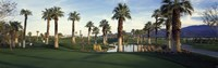 Palm trees in a golf course, Desert Springs Golf Course, Palm Springs, Riverside County, California, USA Fine Art Print