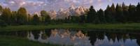 "Grand Teton Park, Wyoming by Panoramic Images - 36"" x 12"""
