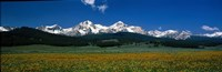 """Sawtooth Mtns Range Stanley ID USA by Panoramic Images - 36"""" x 12"""" - $34.99"""