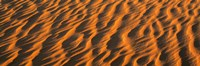Wind blown Sand TX USA Fine Art Print