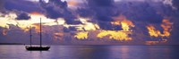 """Sunset Moorea French Polynesia by Panoramic Images - 36"""" x 12"""""""