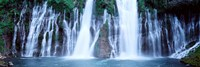 "McArthur-Burney Falls Memorial State Park, California by Panoramic Images - 36"" x 12"""