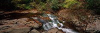 """White Water The Great Smoky Mountains TN USA by Panoramic Images - 36"""" x 12"""" - $34.99"""