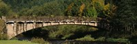 """Bridge in a forest, Black Forest, Germany by Panoramic Images - 36"""" x 12"""""""