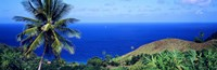 "Pigeon Point Tobago by Panoramic Images - 36"" x 12"""