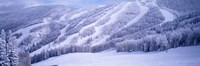 Mountains, Snow, Steamboat Springs, Colorado, USA Fine Art Print