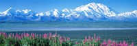 "Mountains & Lake Denali National Park AK USA by Panoramic Images - 36"" x 12"""