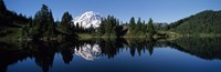 "Eunice Lake Mt Rainier National Park WA USA by Panoramic Images - 36"" x 12"""