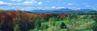 "Autumn Trees VT by Panoramic Images - 36"" x 12"", FulcrumGallery.com brand"