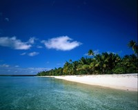 "Tahiti French Polynesia by Panoramic Images - 24"" x 19"""