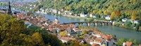 """Aerial view of a city at the riverside, Heidelberg, Baden-Wurttemberg, Germany by Panoramic Images - 36"""" x 12"""""""