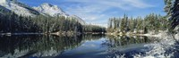 """Reflection of trees in a lake, Yellowstone National Park, Wyoming, USA by Panoramic Images - 36"""" x 12"""""""