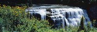 """Waterfall in a park, Middle Falls, Genesee, Letchworth State Park, New York State, USA by Panoramic Images - 36"""" x 12"""""""