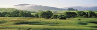 """Farmland Southland New Zealand by Panoramic Images - 36"""" x 12"""""""