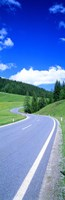 """Wildflowers in a field, Tyrol, Austria by Panoramic Images - 12"""" x 36"""""""