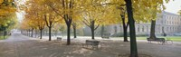 """Park Geneve, Switzerland by Panoramic Images - 36"""" x 12"""""""