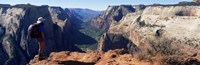 "Female hiker standing near a canyon, Zion National Park, Washington County, Utah, USA by Panoramic Images - 36"" x 12"""