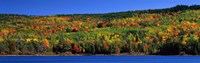 "Autumn Eagle Lake, Acadia National Park, Maine, USA by Panoramic Images - 36"" x 12"", FulcrumGallery.com brand"