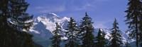 Mountains covered with snow, Swiss Alps, Wengen, Bernese Oberland, Switzerland Fine Art Print