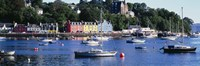 """Boats docked at a harbor, Tobermory, Isle of Mull, Scotland by Panoramic Images - 36"""" x 12"""""""