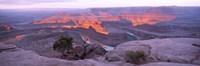 "Sunrise, Deadhorse State Park, Utah, USA by Panoramic Images - 36"" x 12"""