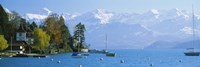 Lake on the mountainside, Lake Thun, Hilterfingen, Canton of Bern, Switzerland by Panoramic Images - various sizes
