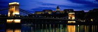 Szechenyi Bridge Royal Palace Budapest Hungary Fine Art Print