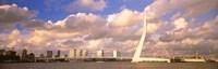 Netherlands, Holland, Rotterdam, Erasmus Bridge Fine Art Print