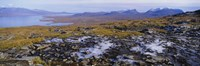 """Lake on a landscape, Njulla, Lake Torne, Lapland, Sweden by Panoramic Images - 36"""" x 12"""""""